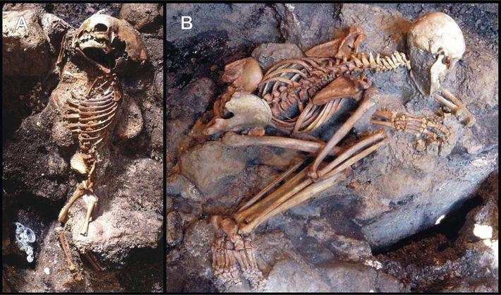 Esses esqueletos de uma criança e um jovem adulto foram desenterrados de uma camada de cinzas ...