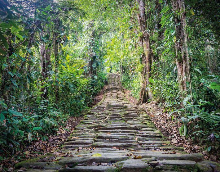 Essa escadaria em Teyuna fazia parte de uma rede de escadas e caminhos de pedras que ...