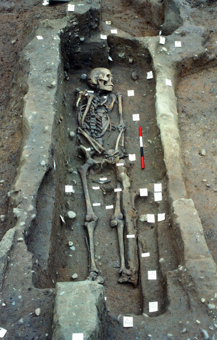 ossos-viking