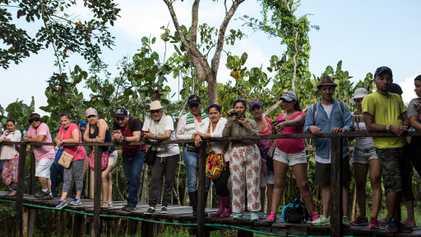 Comunidade amazônica tenta superar o turismo de vida selvagem ilegal