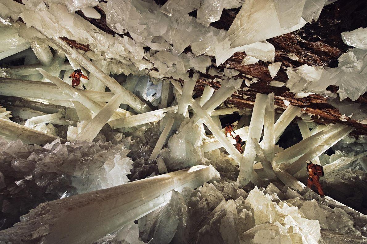 A cerca de trezentos metros abaixo da superfície da Terra, gigantescos cristais de selenita se encontram ...