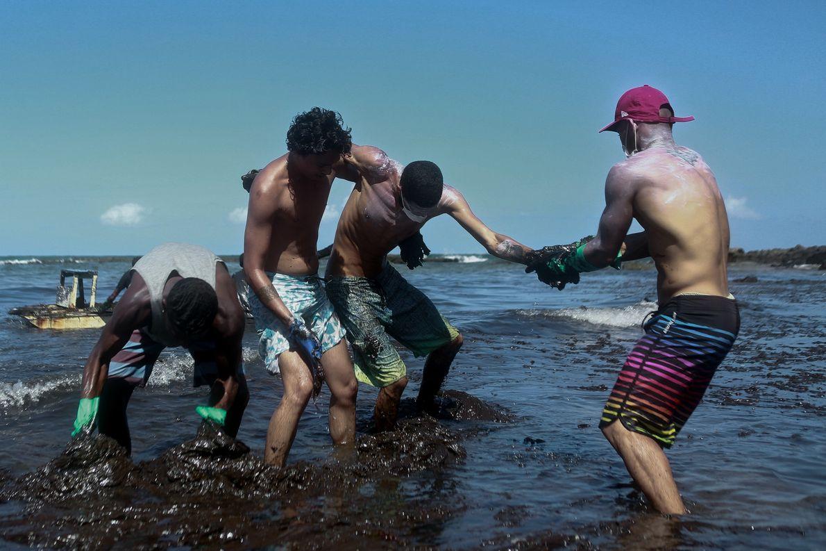 Voluntários tentam resgatar jovem que ficou preso em meio à densa camada de óleo que invadiu …
