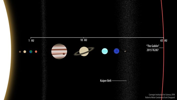 Ilustração mostra a órbita do 2015 TG387, apelidado de Goblin, em comparação ao resto do sistema ...