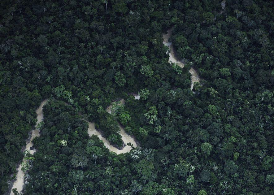 tribos-nao-contatadas-amazonia