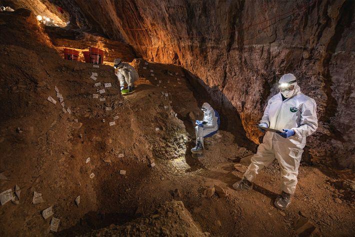 Cientistas comparam anotações sobre a estratigrafia da Caverna Chiquihuite, na preparação para coleta de amostras de ...