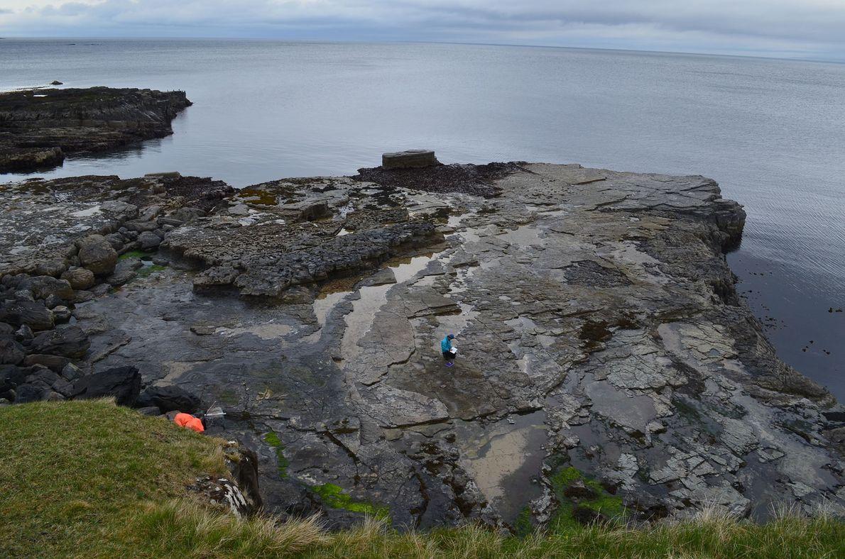 pegadas-de-dinossauros-escocia