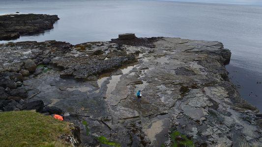 Enormes pegadas de dinossauro descobertas em ilha escocesa