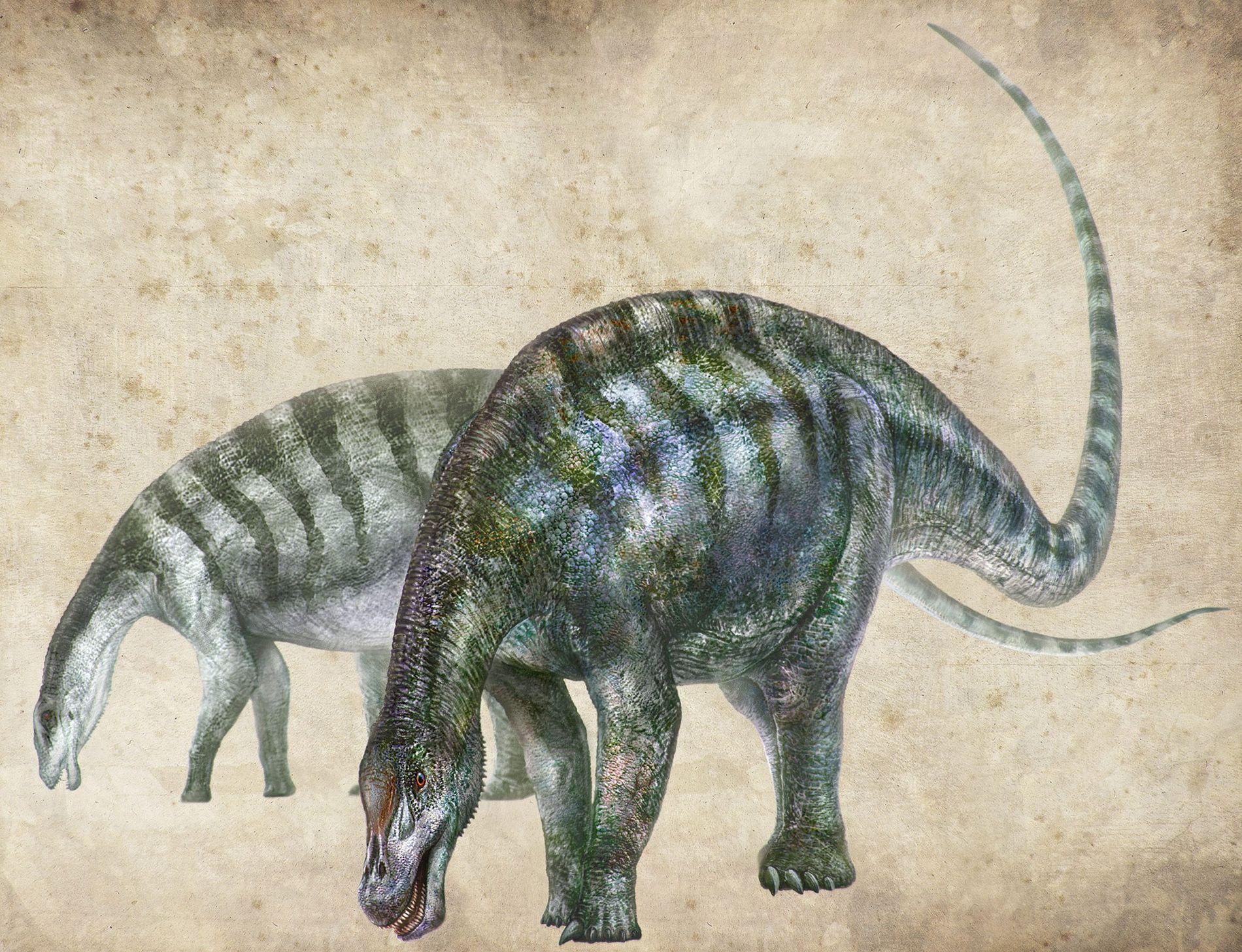 """Uma ilustração mostra como seria o """"dragão chinês"""" Lingwulong shenqi."""
