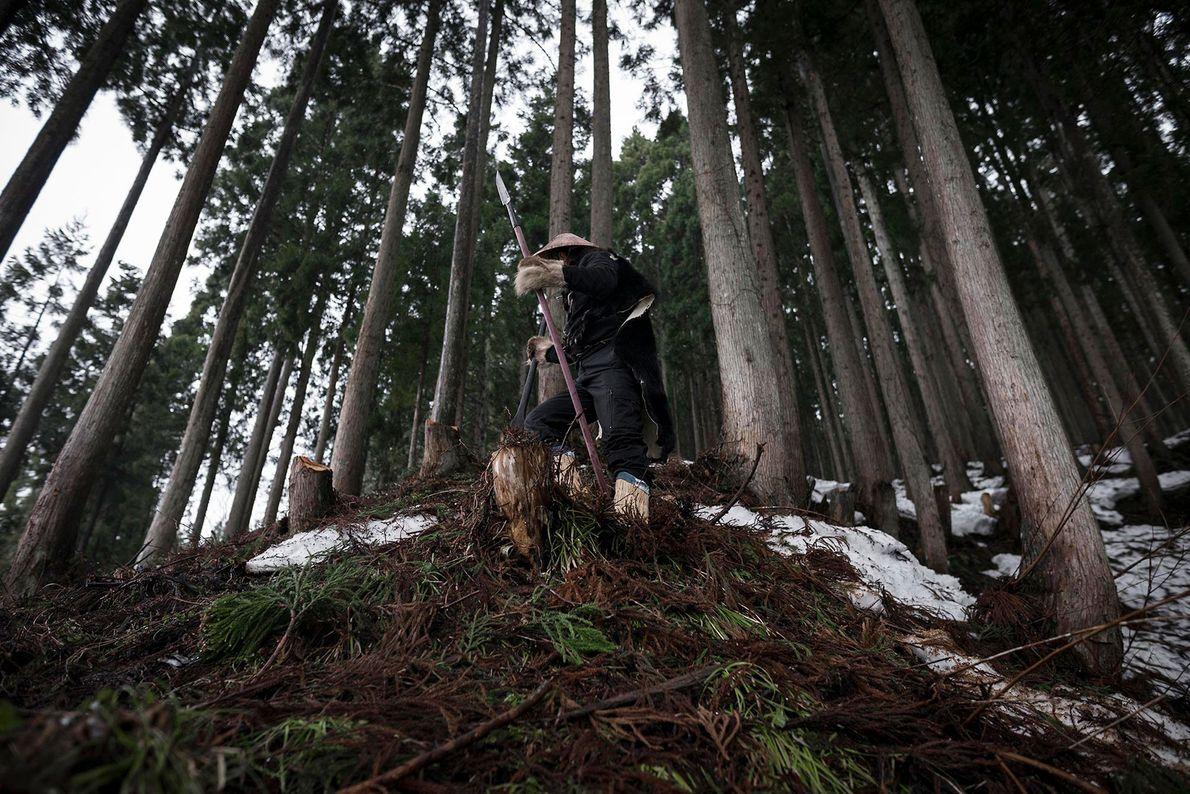 caçadores-matagi
