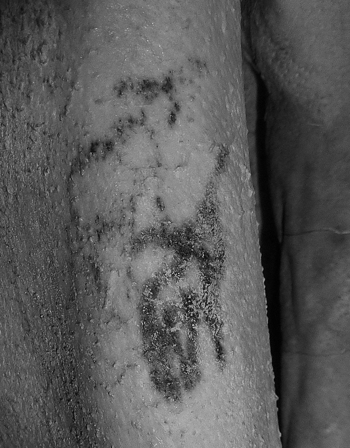 tatuagem-mais-antiga-do-egito