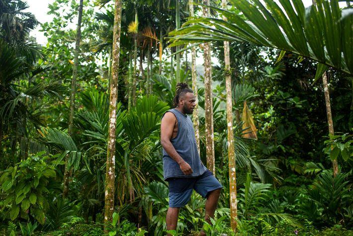 Philip Manakako caminha pela floresta perto de sua aldeia natal, Marasa. Ele exerceu um papel fundamental ...