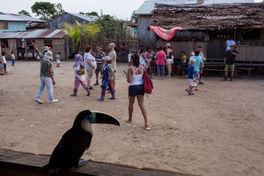 Na presença de um tucano em cativeiro, os visitantes compram lanches e passeiam no centro de …