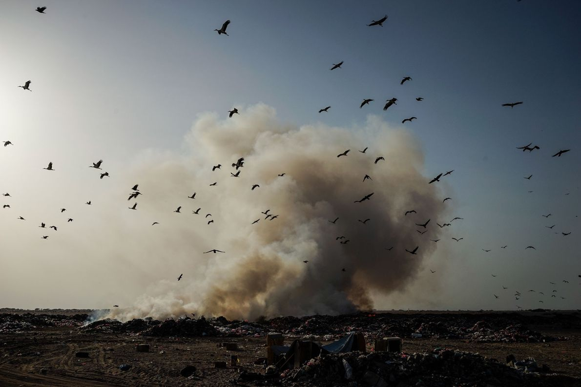 Centenas de iemenitas empobrecidos que vivem no distrito de Buraiqeh, a oeste de Aden, precisam resistir ...