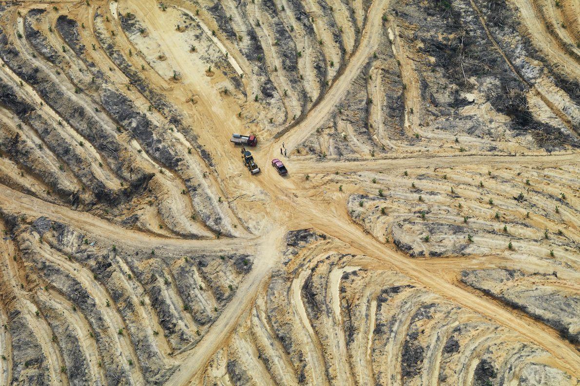 Esta imagem aérea mostra uma paisagem degradada em Johor, na Malásia. O desmatamento tropical ocorre principalmente …