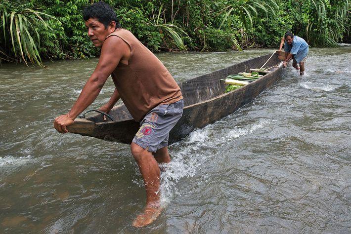Para os povos indígenas sáparas, do Equador, poder mover-se por seu território tradicional é essencial para ...