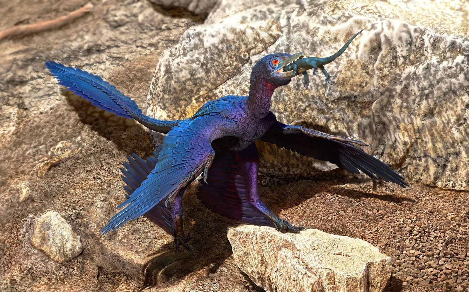 Réptil raro foi a última refeição de dinossauro de quatro asas, revela fóssil de 130 milhões ...