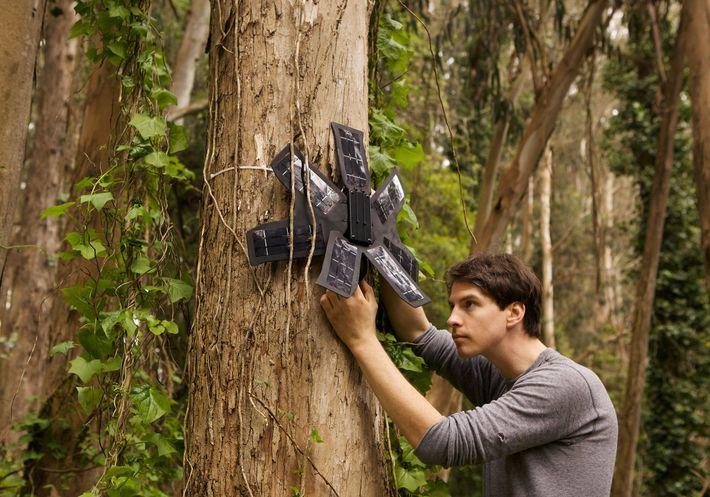 Topher White, fundador e presidente da Rainforest Connection, utiliza celular reciclado equipado com painéis solares e ...