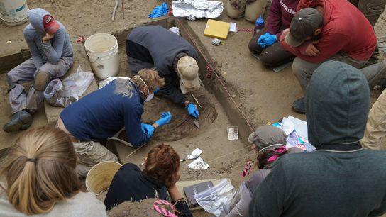Os restos mortais de uma criança encontrada em um acampamento com 11,500 anos no centro do ...