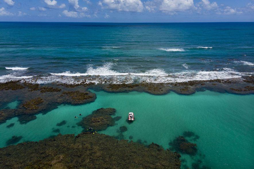 Com 135 quilômetros de extensão ao longo do litoral sul de Pernambuco e norte de Alagoas, ...