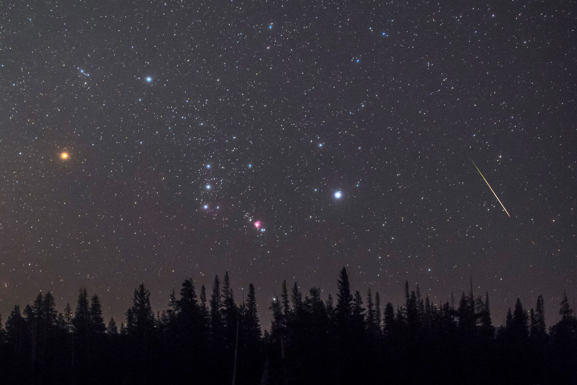 Um meteoro passa no horizonte pela constelação de Órion, conhecida como o caçador. Betelgeuse, a estrela ...
