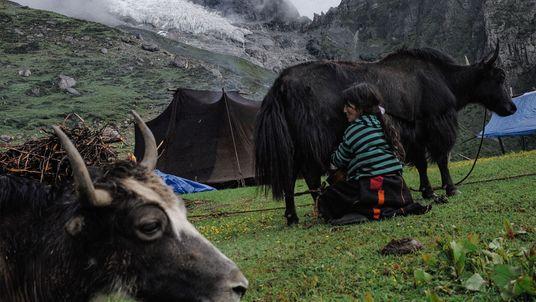 Butão é pioneiro em esforços de mitigação das mudanças climáticas