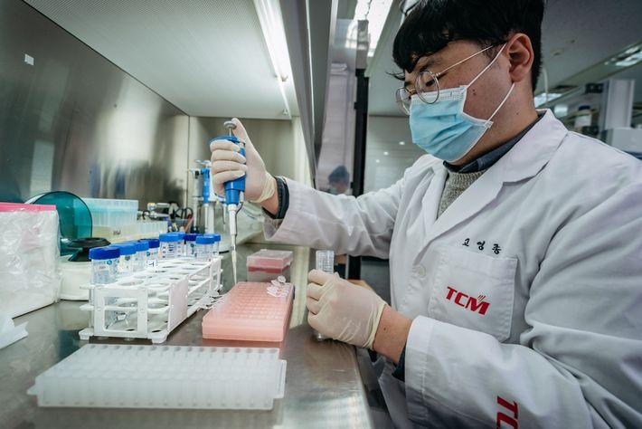 Técnico de laboratório separa os reagentes na TCM Biosciences, empresa desenvolvedora de kits de teste da ...