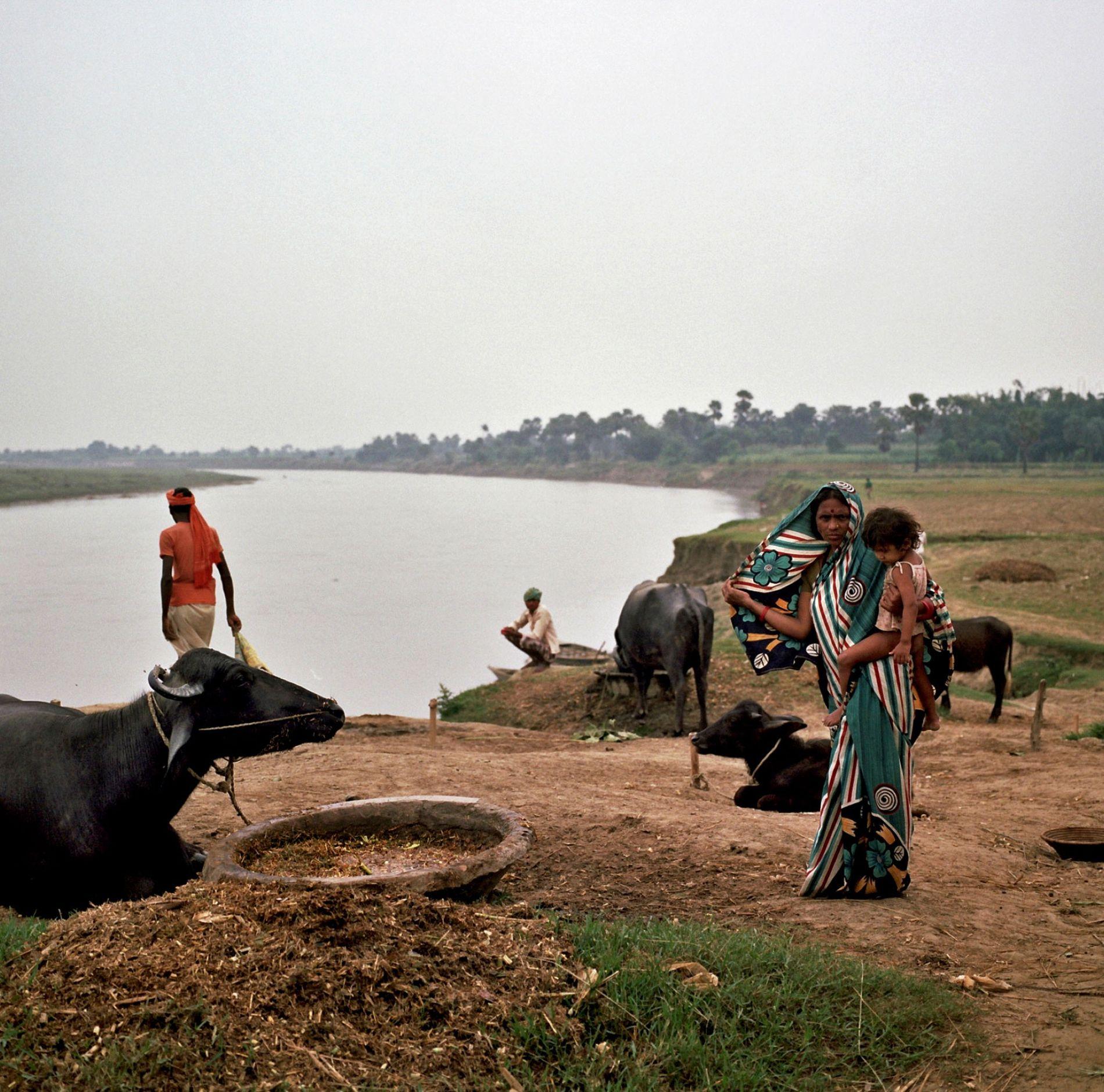 O Ganges circula pelo estado de Bihar, onde, em 1917, em uma de suas primeiras campanhas de resistência pacífica, Gandhi inspirou agricultores pobres a resistirem contra a exploração de comerciantes de índigo. No ano passado, o ativista ambientalista Guru Das Agrawal iniciou uma greve de fome, assim como Gandhi fazia, em um protesto contra a omissão do governo frente à degradação do rio. Ele morreu 111 dias depois.
