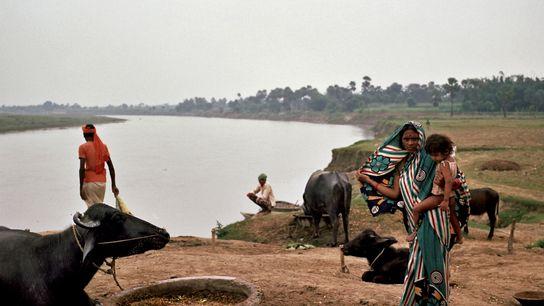 O Ganges circula pelo estado de Bihar, onde, em 1917, em uma de suas primeiras campanhas ...