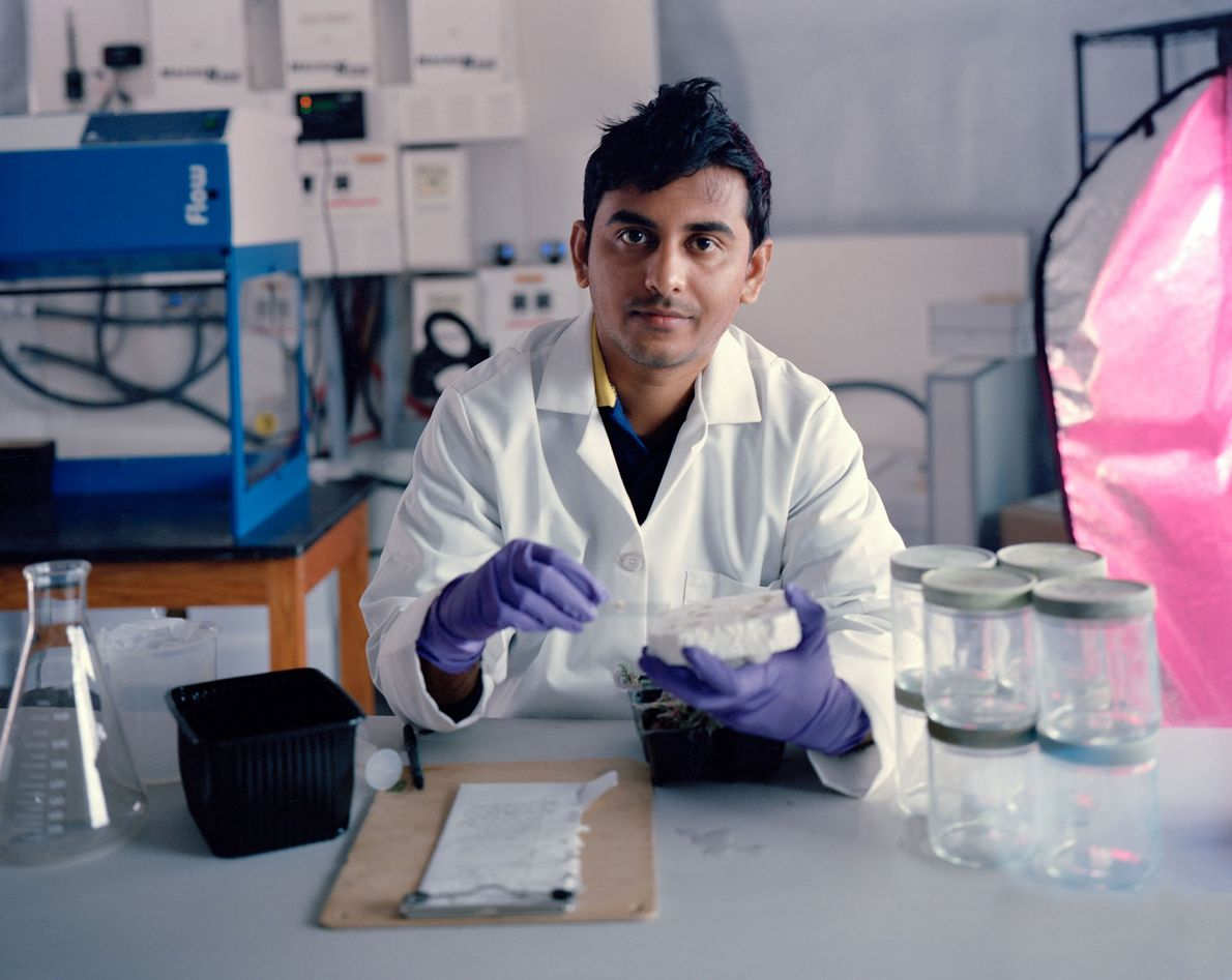 O cientista Avishek Ghosh, da equipe 181 da Estação Desértica de Pesquisa de Marte, examina bactérias ...
