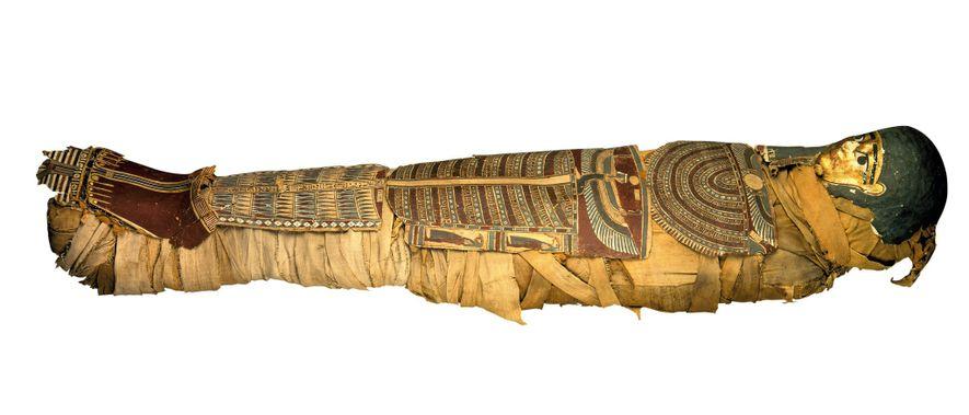 Ao longo do século 19, os principais museus arqueológicos da Europa se esforçaram para reunir coleções ...