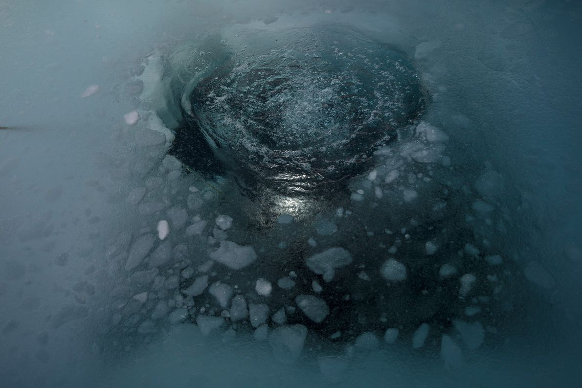 Small holes in the ice are carved to allow the scientists to dive below.  ...