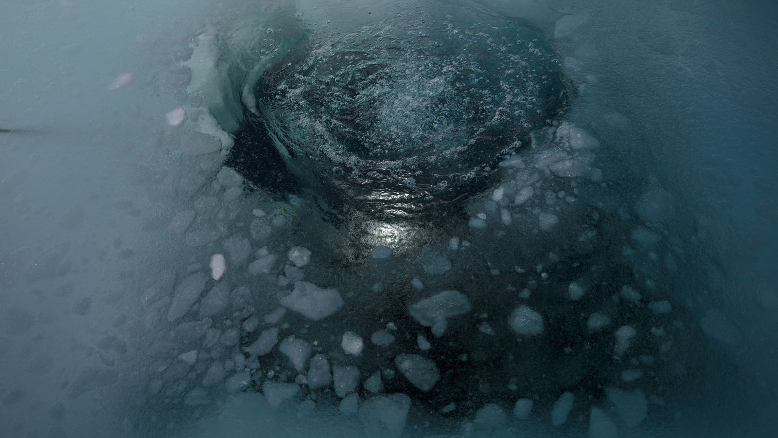 Small holes in the ice are carved to allow the scientists to dive below.