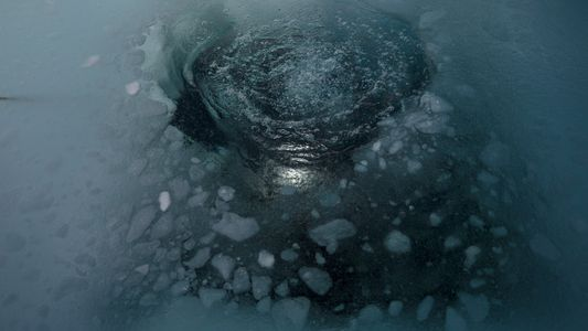 Foto: Mergulhe abaixo da 'Terra Incógnita' da Groenlândia