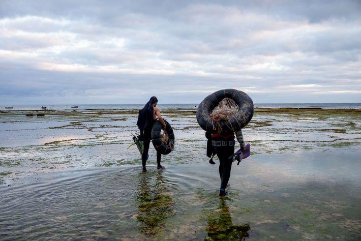 Carregando câmaras de ar que seriam usadas como boias, dois mergulhadores seguem para a água durante ...