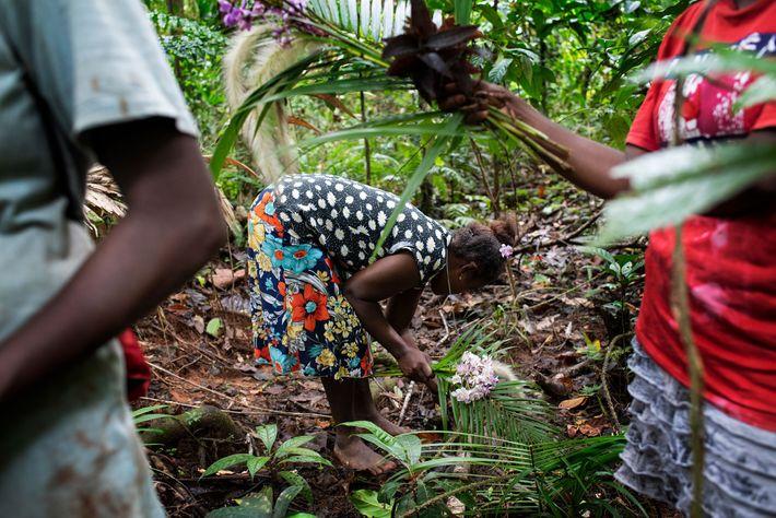 A conservacionista Mary Osirii colhe flores. As mulheres do vilarejo de Igwa se voluntariam para monitorar ...