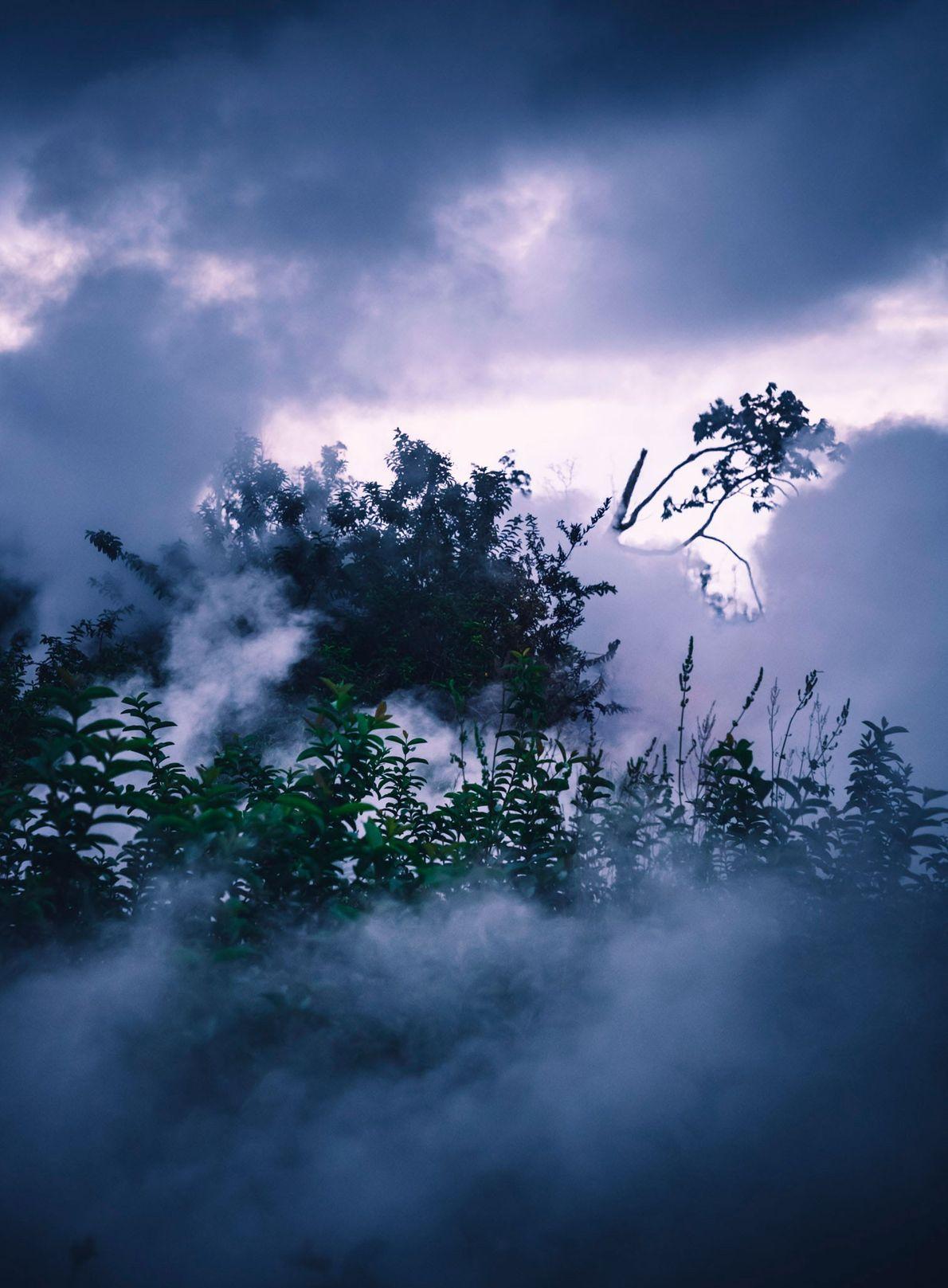 Vapor e nuvens envolvem a vegetação da Grande Ilha do Havaí.