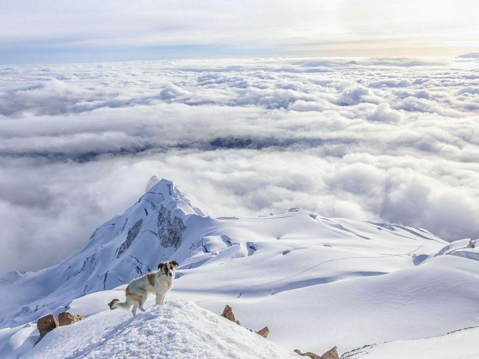 Picos e cumes: 30 fotos de aventuras majestosas nas montanhas