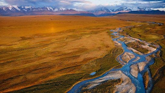A planície costeira do Refúgio Nacional de Vida Selvagem do Ártico, no Alasca, abriga o caribu ...