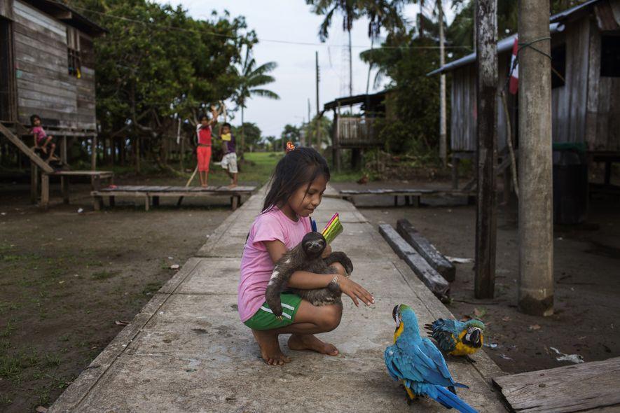 Larisa Campos, 8, segura uma preguiça em um de seus braços e seus livros de escola ...