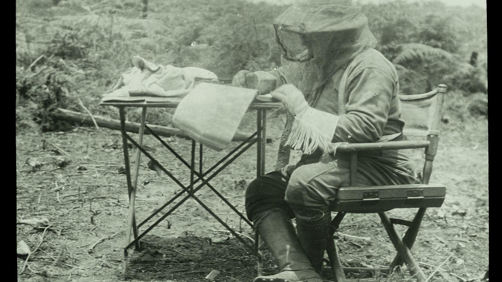 Theodore Roosevelt escreve durante expedição Rondon-Roosevelt.