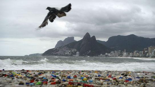 lixo praia rio de janeiro pomba