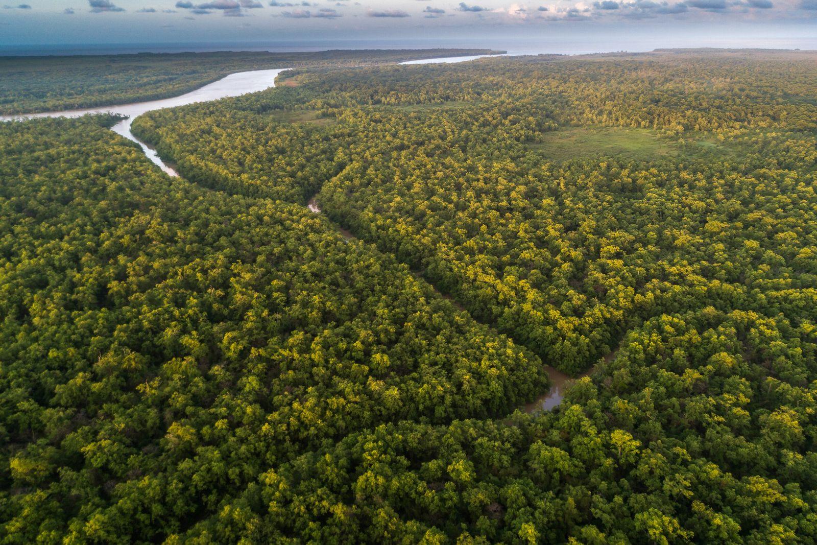 O igarapé Cobra e canal do Inferno abrem caminhos na Estação Ecológica de Maracá-Jipioca, no Amapá. ...