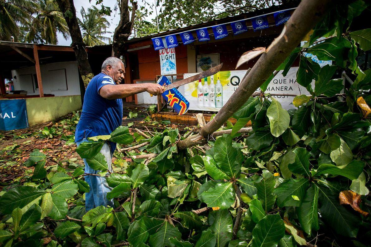 Um homem remove partes de árvores em Piñones, em Porto Rico, após a destruição do furacão ...