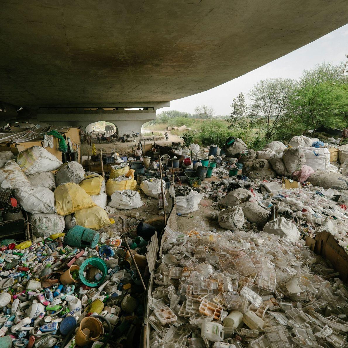 lixo reciclado separação