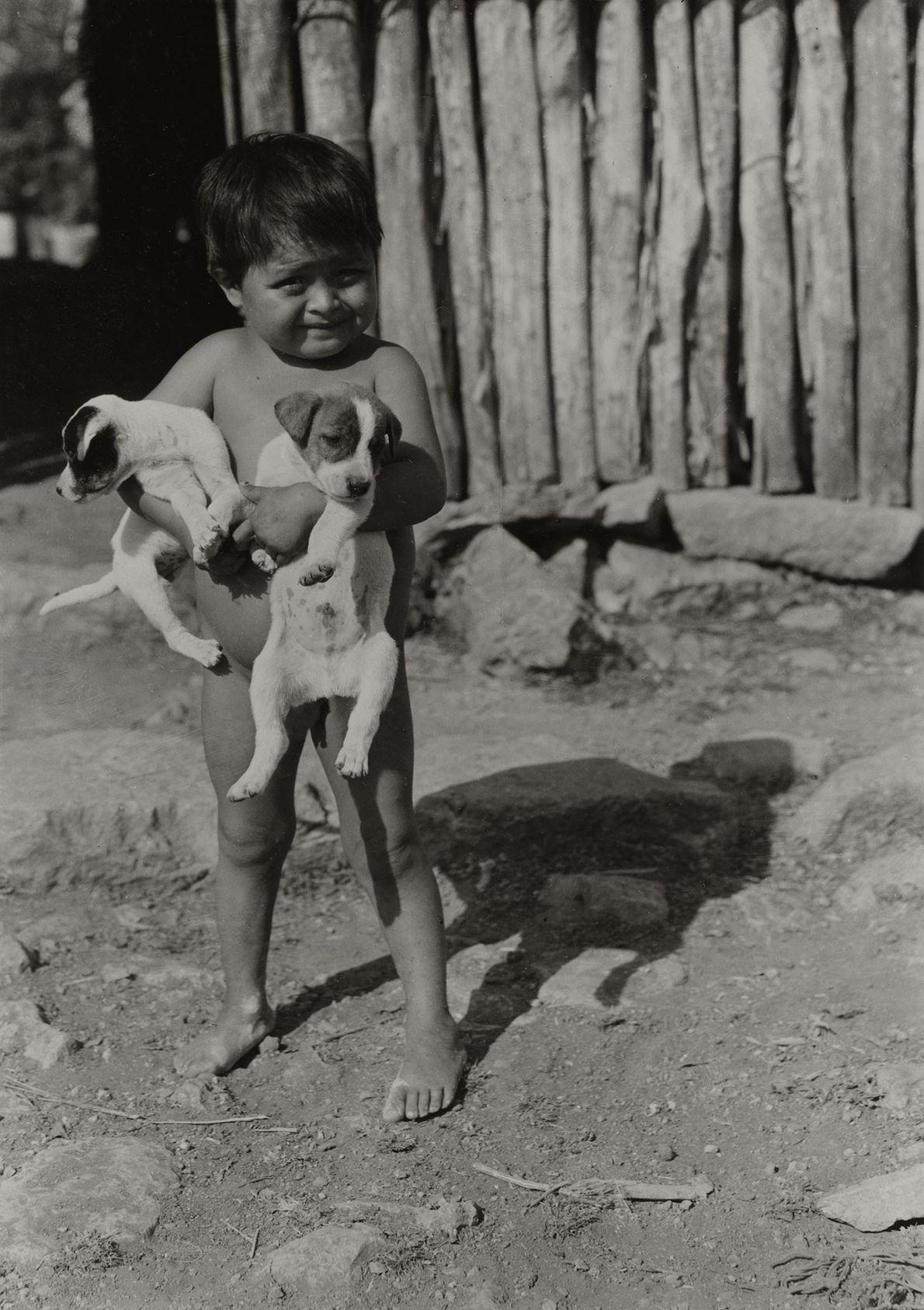 Criança maia nua segura dois filhotes no México.
