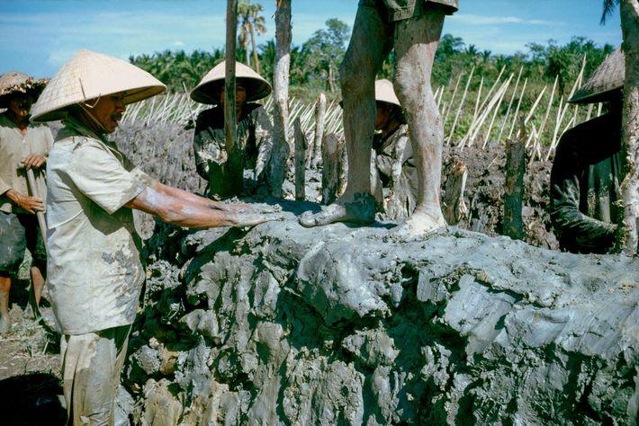 Prisioneiros vietcongues constroem muros de proteção feitos de barro ao redor de um vilarejo no sul ...