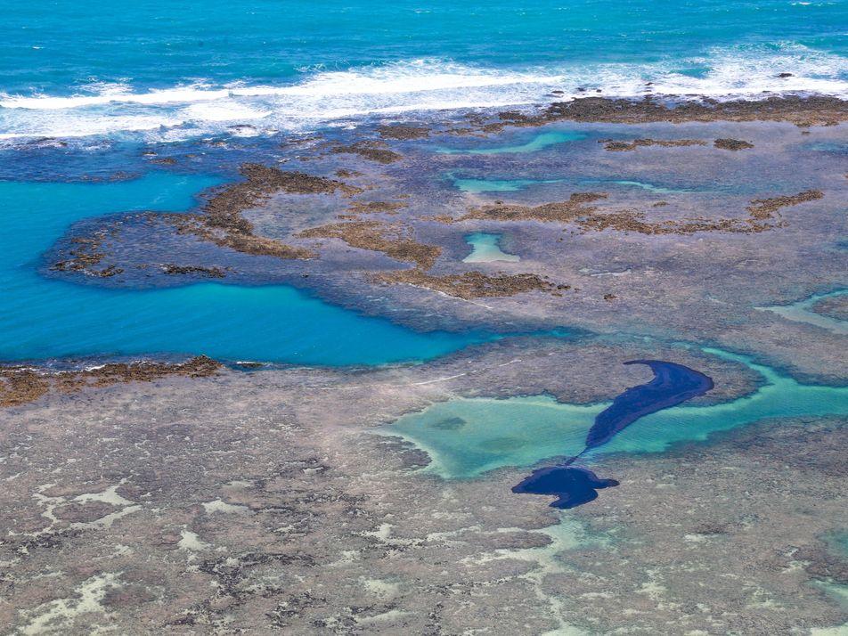 Fotos no litoral do Nordeste revelam a gravidade do derramamento de óleo