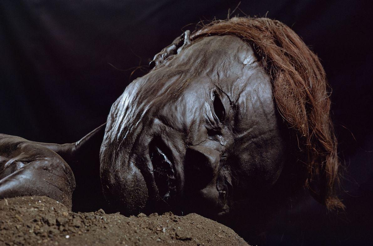 O Homem de Grauballe é uma múmia natural formada por séculos de submersão em uma turfeira. …