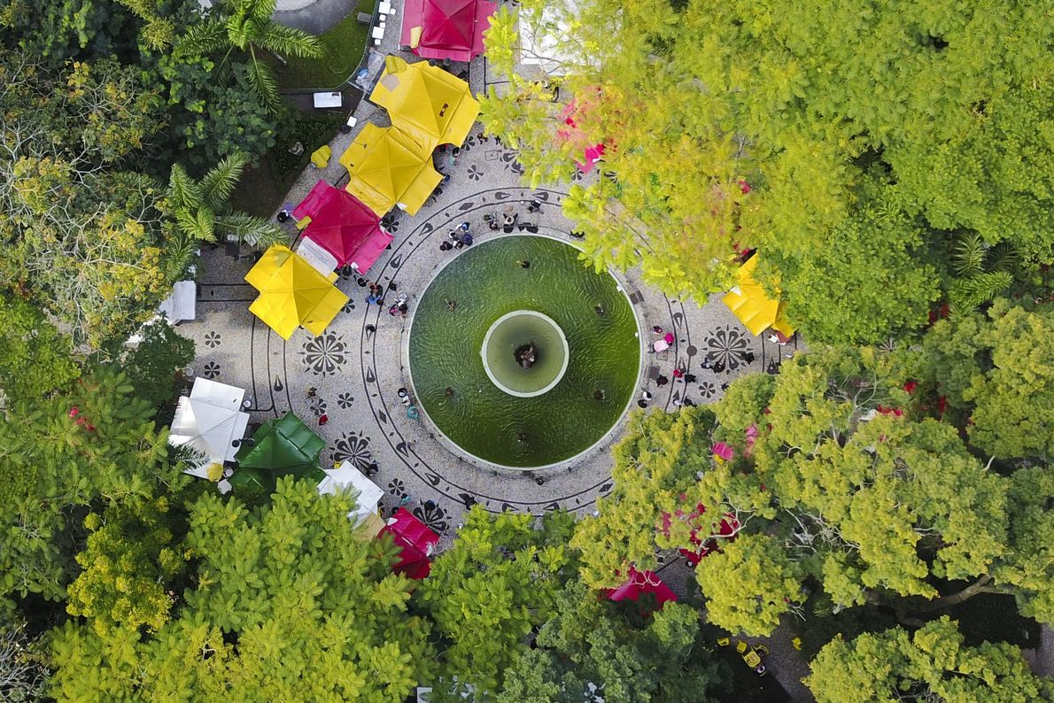 feira-livre-drone-curitiba