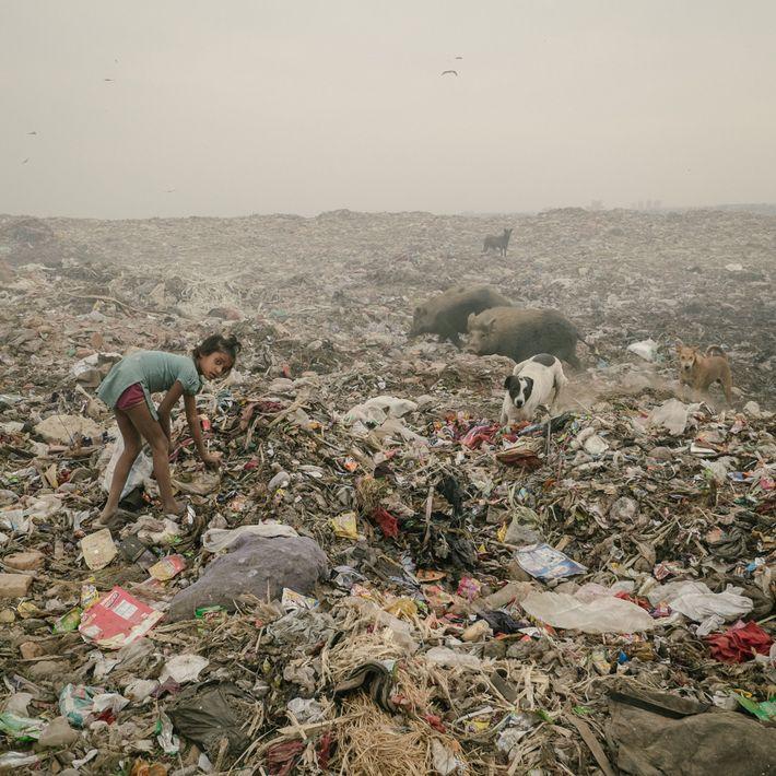 menina catadora de lixo na índia